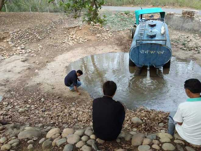 Water shortage: Locals on a mission to save wild animals