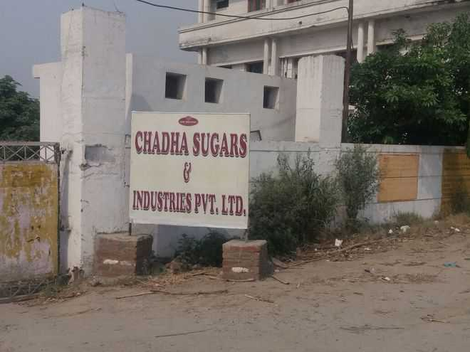 Govt to seal sugar mill for Beas fish deaths