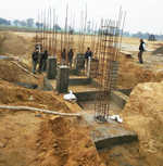 State to set up Rs 7-cr fish seed farm in Mansa