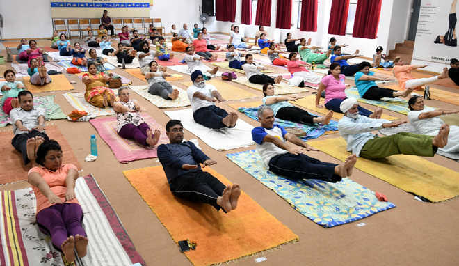 Camp held for yoga enthusiasts