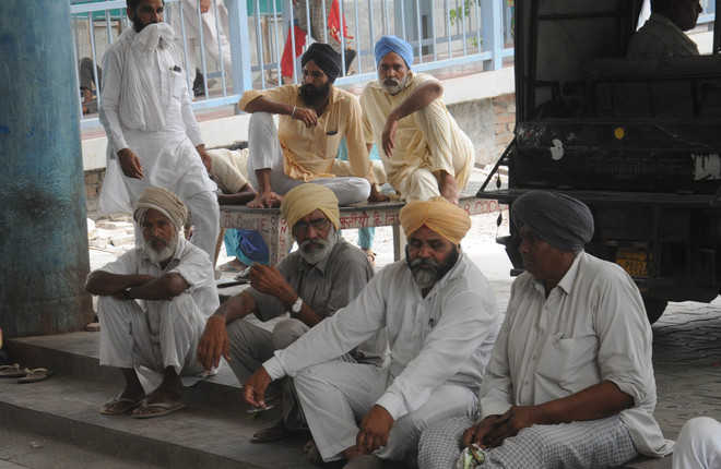 Farmers set their eyes on migrant labourers