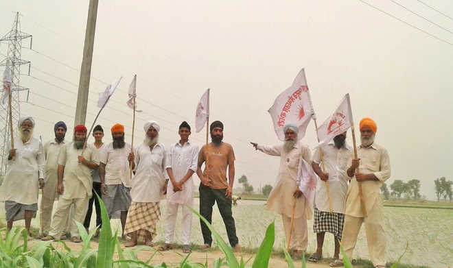 Farmers' union 'exposes' claims of agriculture officials