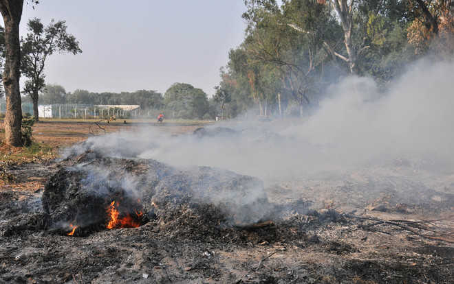 Despite ban, burning of garbage continues unabated in city