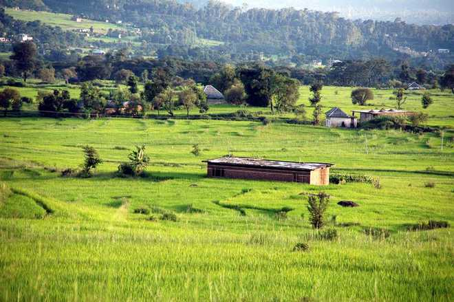 More eco-tourism sites to be leased