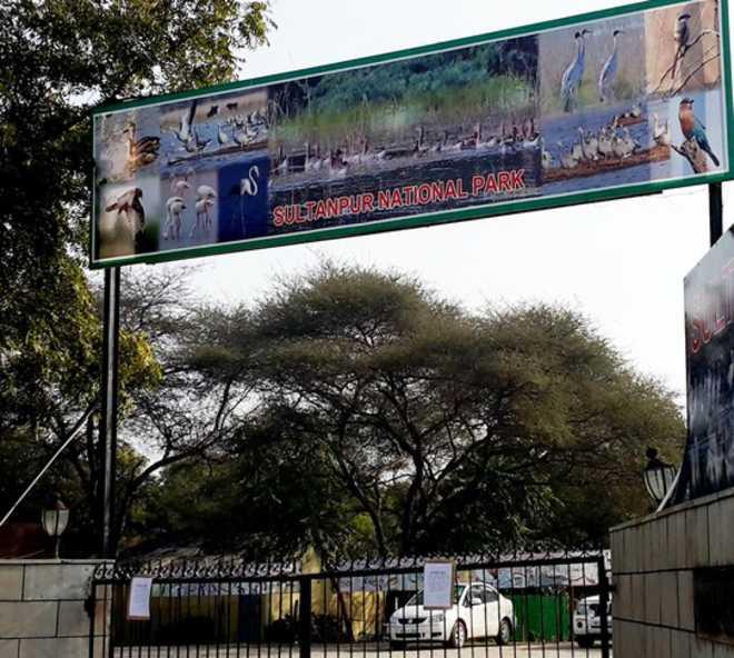 Gurgaon poultry farms put on alert