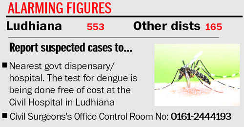 53 more patients test positive for dengue