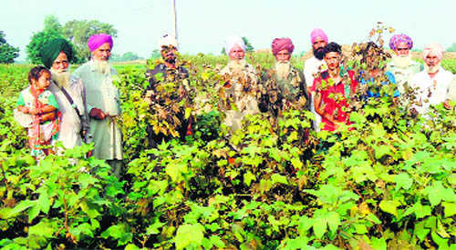Enact law to ensure relief: Farmers to govt