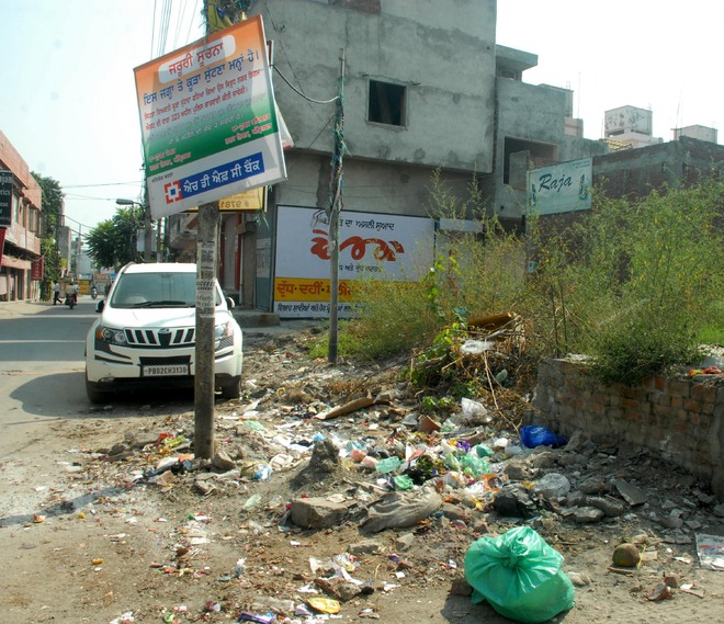Garbage heaps pile up on roadsides in city