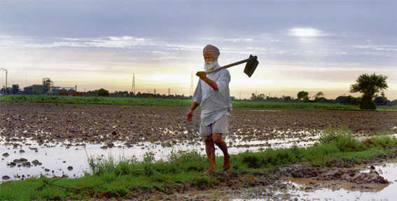 Centre fined for apathy on farmer suicides