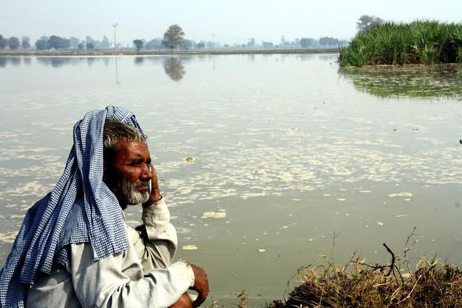 400 acres of agricultural land submerged in Rohtak village