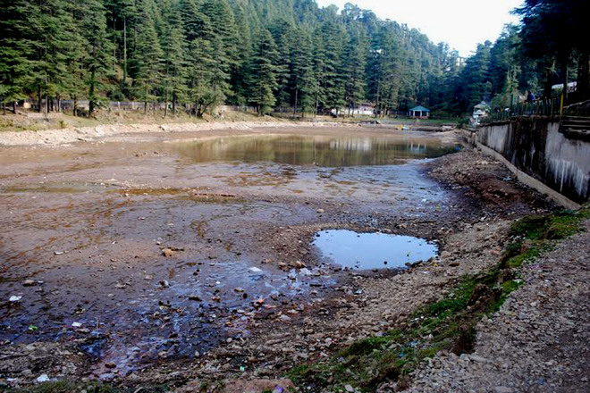 Dharamsala lake dying a slow death