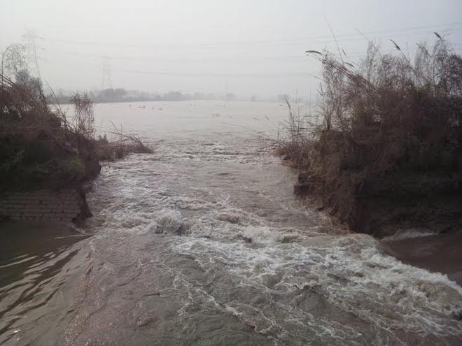 Rohtak canal breach inundates 300 acres