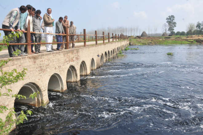 Y'nagar, Jagadhri effluents harm 27 Karnal villages
