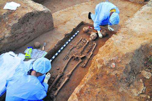 Four Harappan-era skeletons found near Hisar
