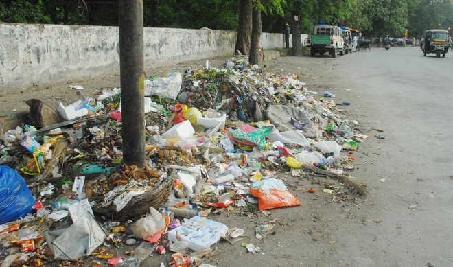 Civic body to launch drive against littering on streets