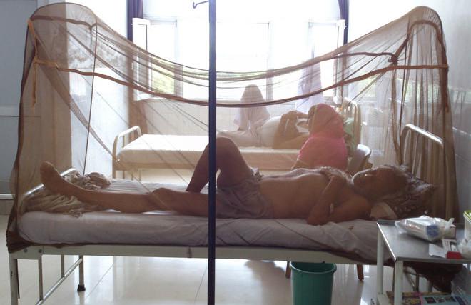 Dengue menace: 60 test positive so far