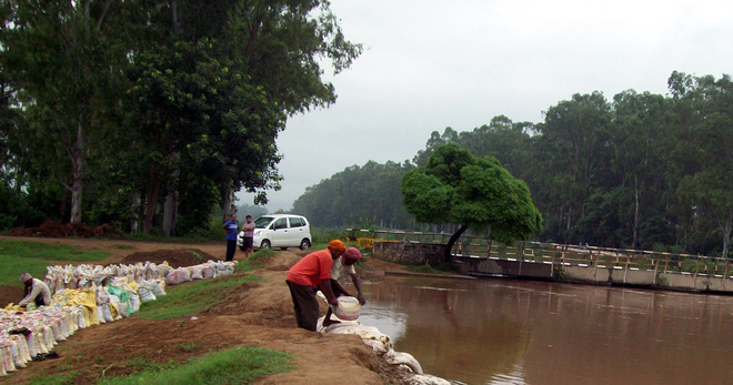 With renovation, area irrigated by canal system to rise to 37%