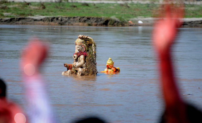 Environmentalists for water-soluble idols