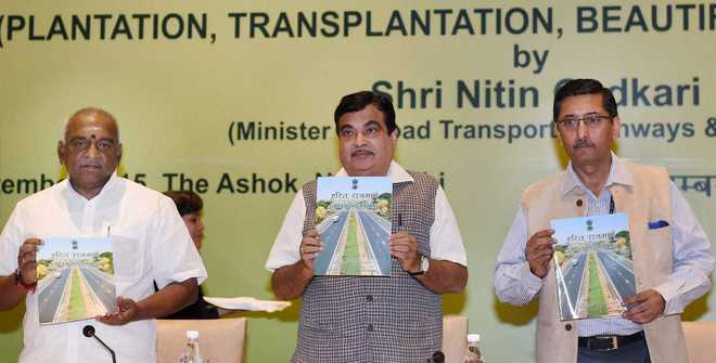 Rs 5,000 cr for green cover on National Highways: Gadkari