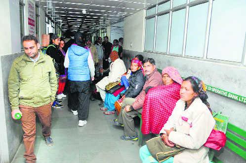 Jaundice cases mount to 500 in Shimla