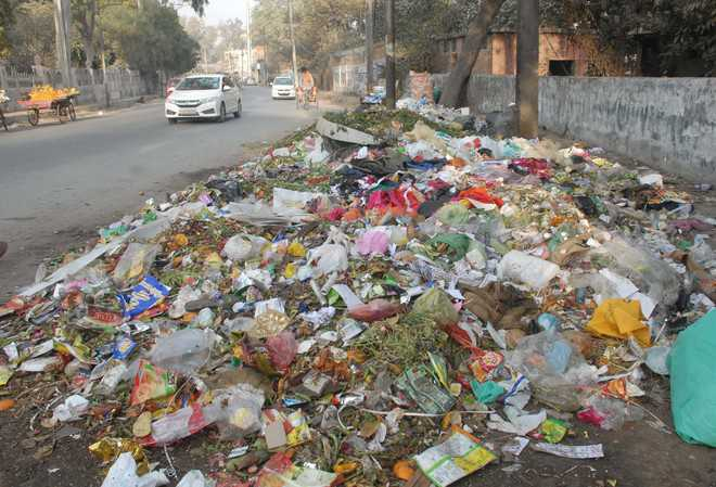 Civic body to issue challans for littering