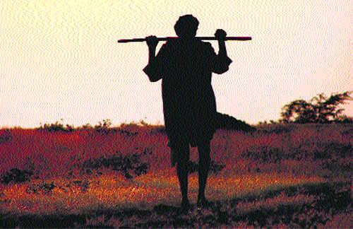 Farmer suicide series: Tribune readers wish to extend help
