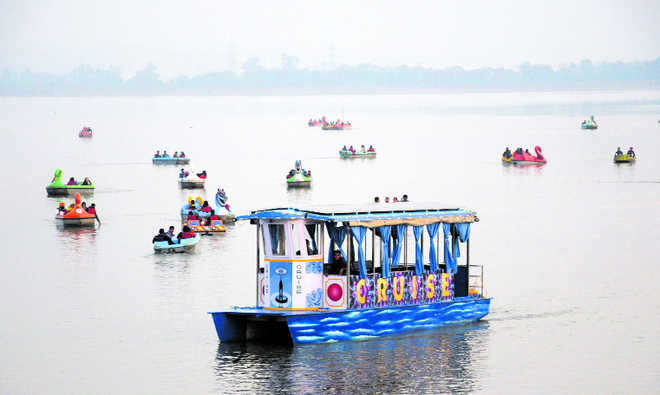 High rates of solar cruise pinch tourists at Sukhna