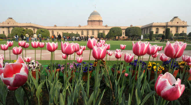 ''Queen Elizabeth'', ''JFK'' to beckon visitors at Mughal Gardens