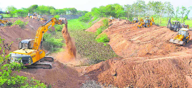 Forest wealth plundered; no plaint, say cops