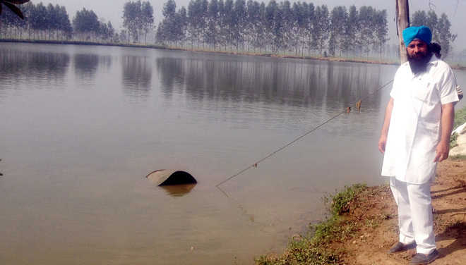Image result for fish farm punjab