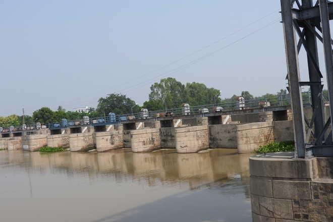 Pontoon gates to rid Harike wetland of silt