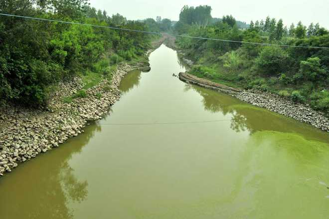 Tragedy along the 'river of sorrow'