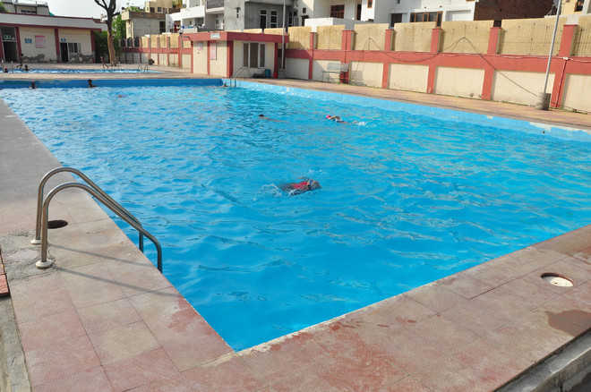 Sportsmen sidelined as BDA\'s swimming pool turns into ...