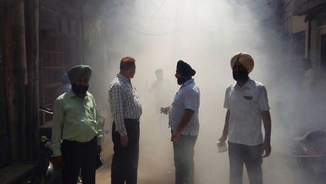 Dengue: Patient count reaches 72