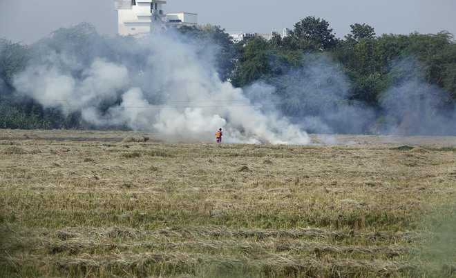 Produce farmers you helped manage stubble: NGT to state