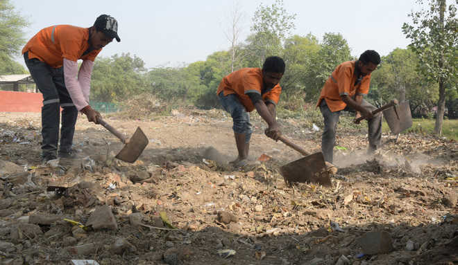 Firm paid  Rs 4 crore a month for cleaning, caught littering