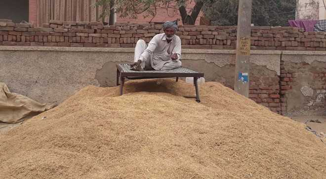 Traders' cartel offers lower prices, growers start stocking basmati