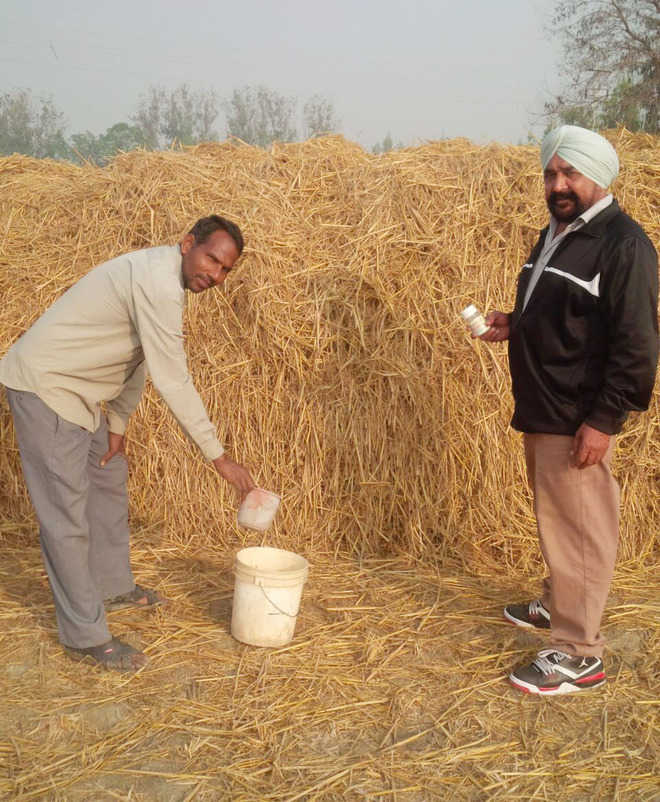 Farmers take to waste decomposer in fields