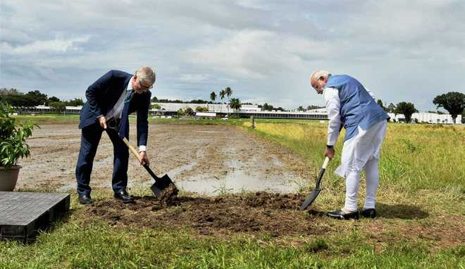 PM contributes 2 Indian rice varieties to IRRI's gene bank