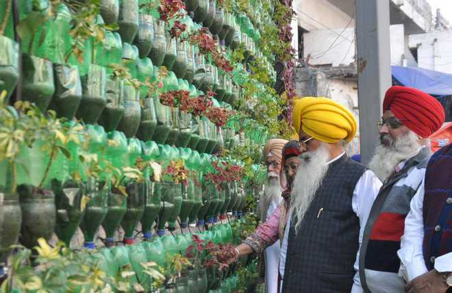 Vertical garden from discarded bottles catching everyone's fancy