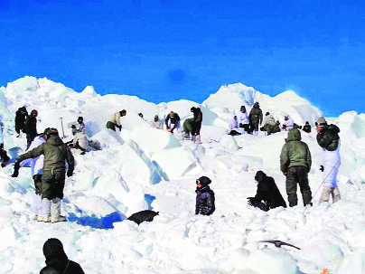 MoD yes to  Rs 70-cr avalanche gear for troops on icy heights