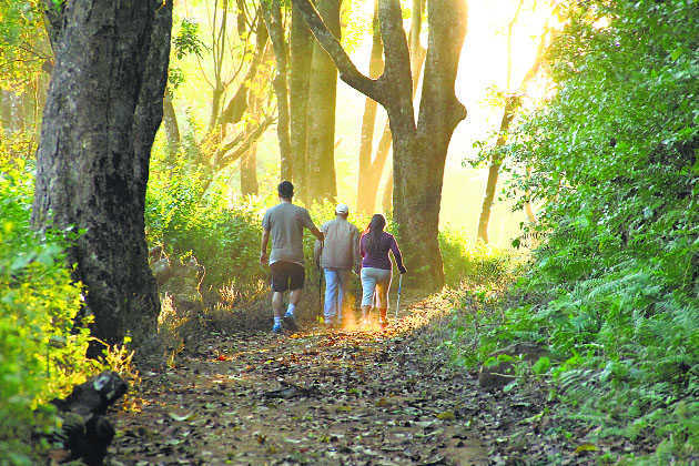 Can Spending Time In Nature Improve >> Spending Time In Nature May Improve Well Being