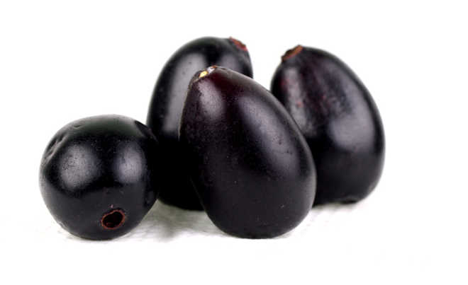 Jamun used to make low-cost solar cells