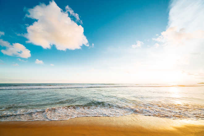 Alarming decrease in oceans'' dissolved oxygen level