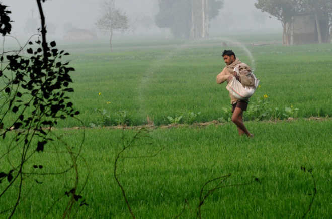 Punjab govt announces loan waiver for small and marginal farmers