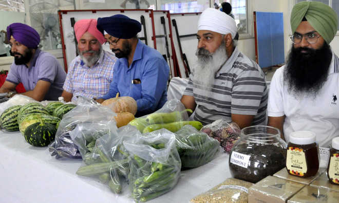 A first for Mohali: Organic agri market takes off today