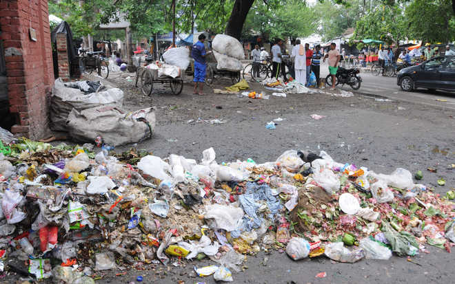 Garbage segregation project yet to take off in Mohali