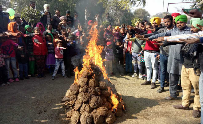 GNDTP contract workers observe black Lohri