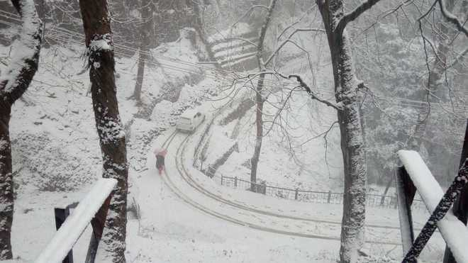Shimla gets season's first snowfall, tourists rejoice