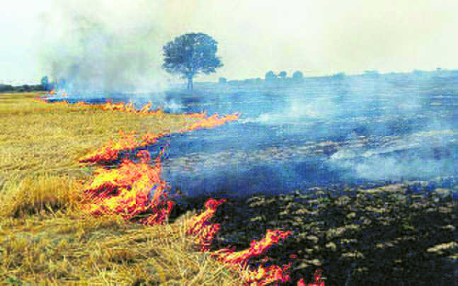 School teachers told to check stubble fires